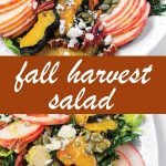pin image for fall harvest salad recipe