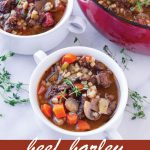 pin image design for beef barley soup