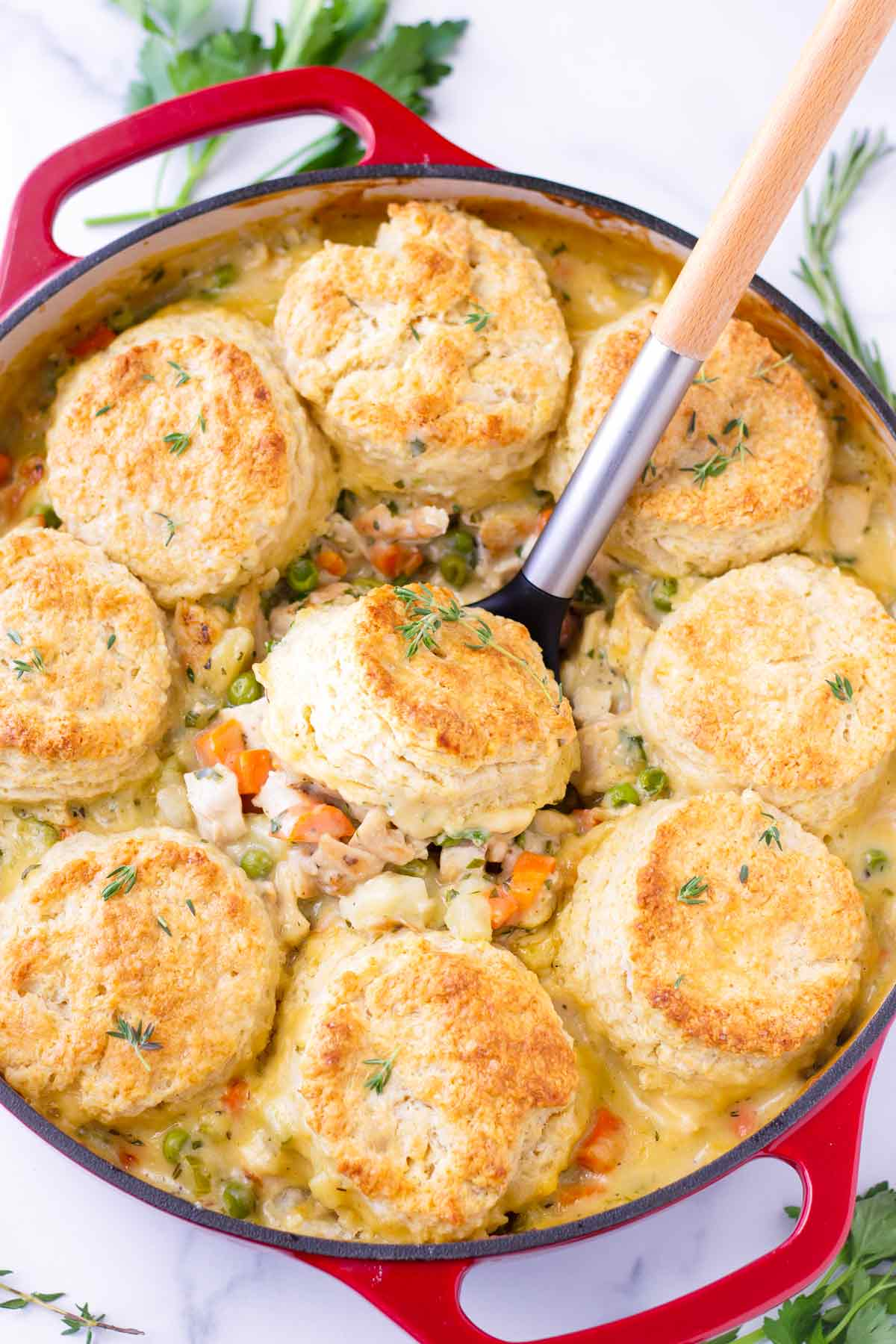 Chicken stew topped with homemade biscuits