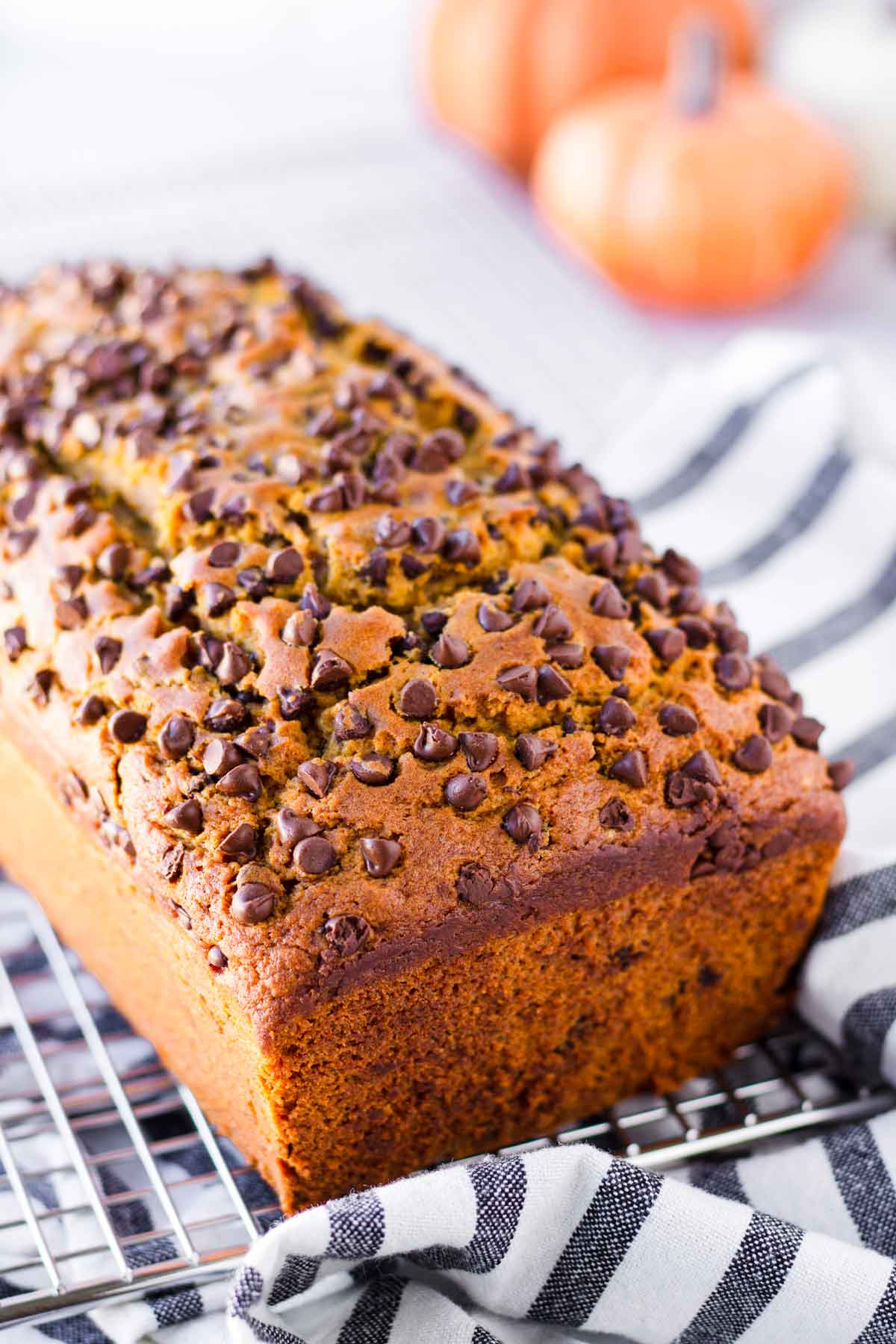 a 9 by 5 inch loaf of quick bread topped with chocolate chips