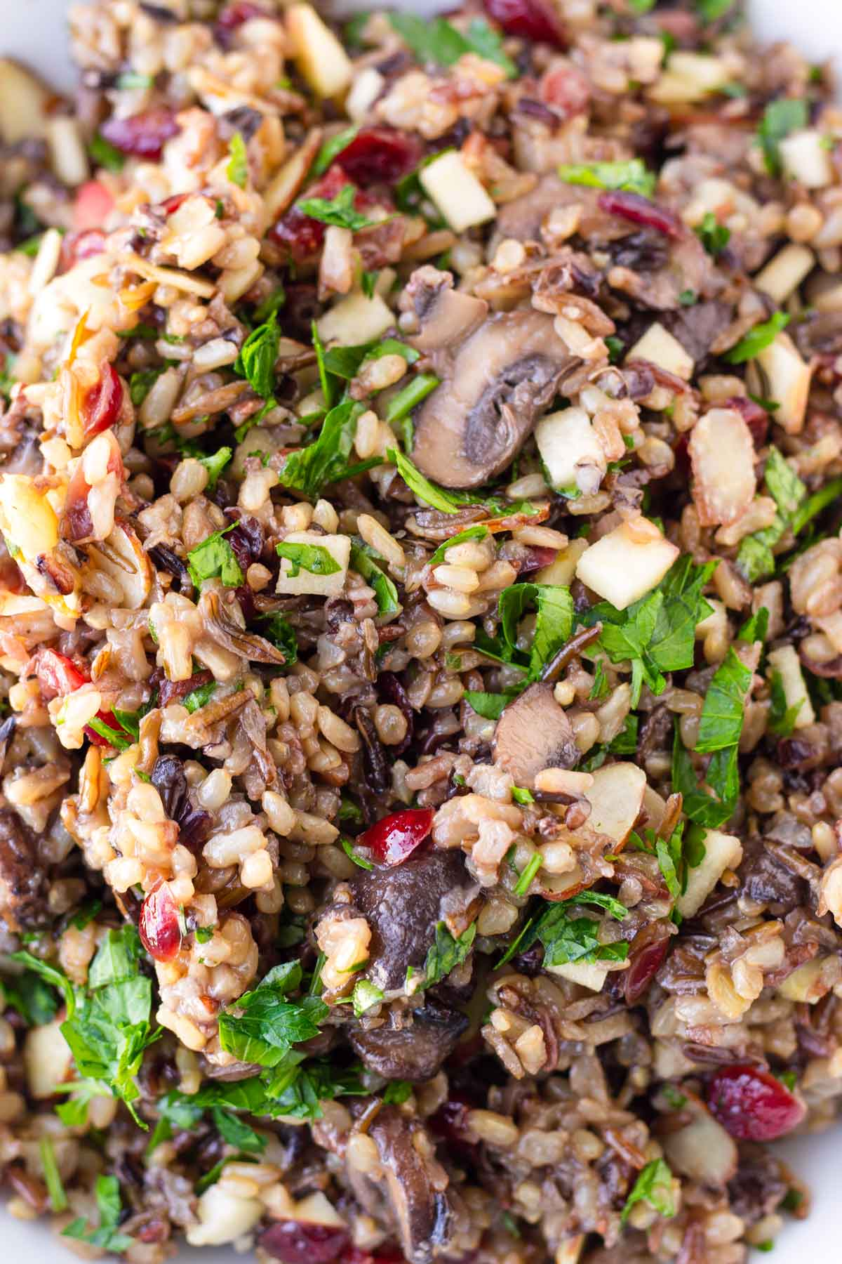mixed rice blend with mushrooms, parsley, cranberries